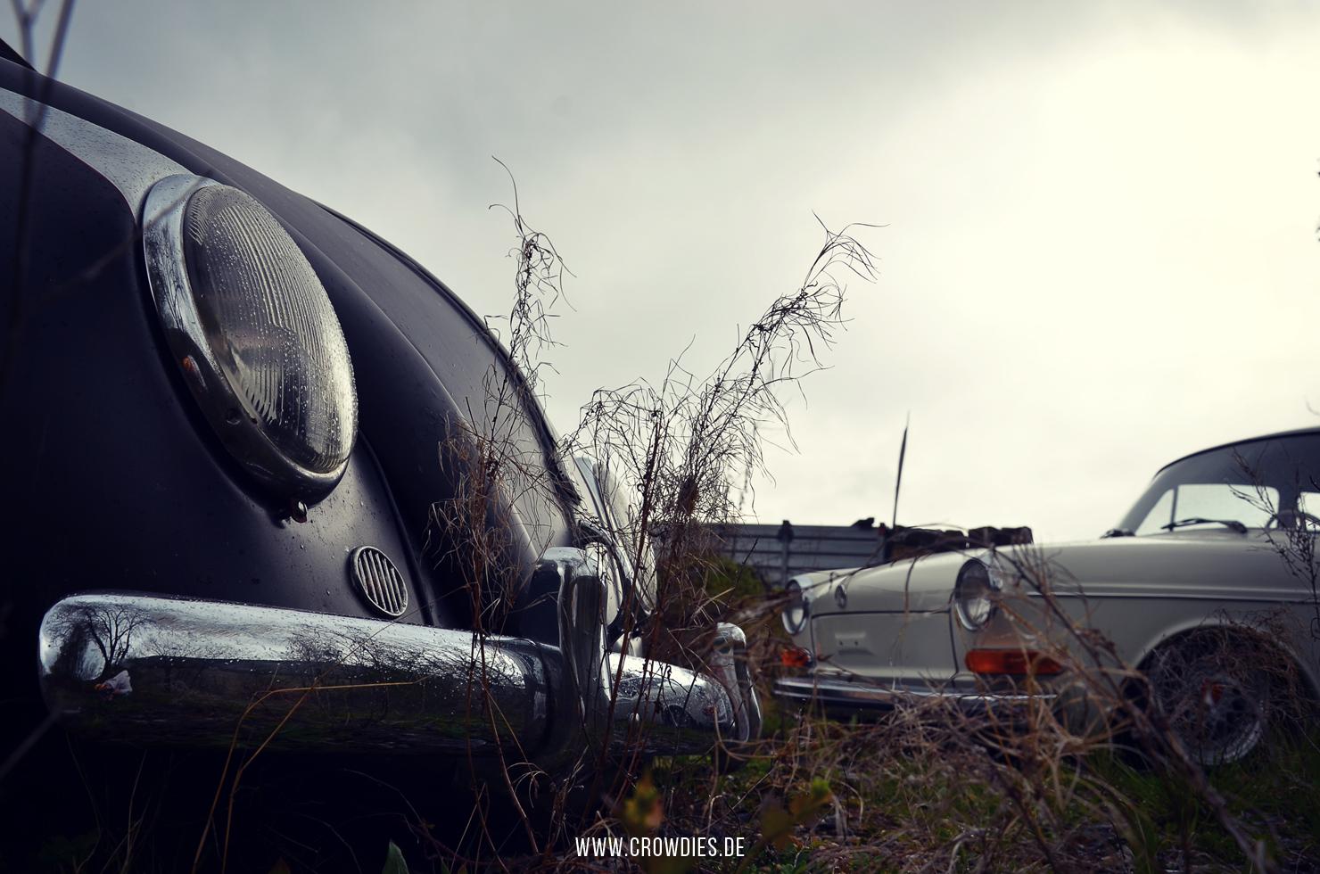 Ralf's VW Käfer